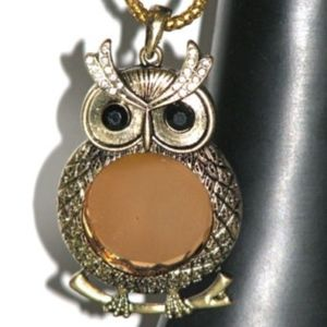 Jewelry - NEW Brass Tone Necklace Owl Pendant Chain Mirror
